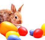 Wir wünschen Ihnen eine schöne Osterzeit!